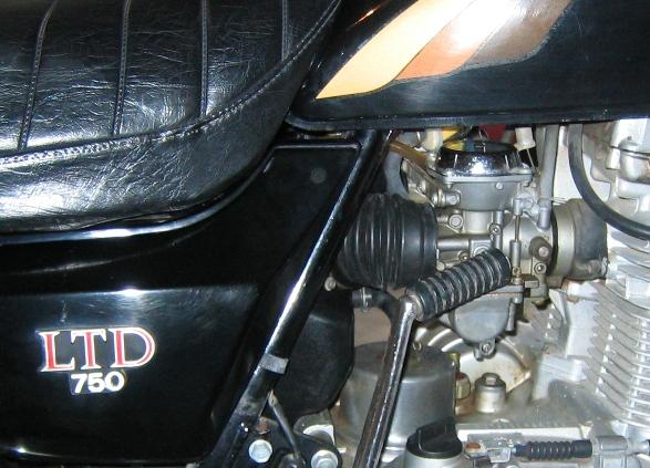 Moog mod, side view, on bike